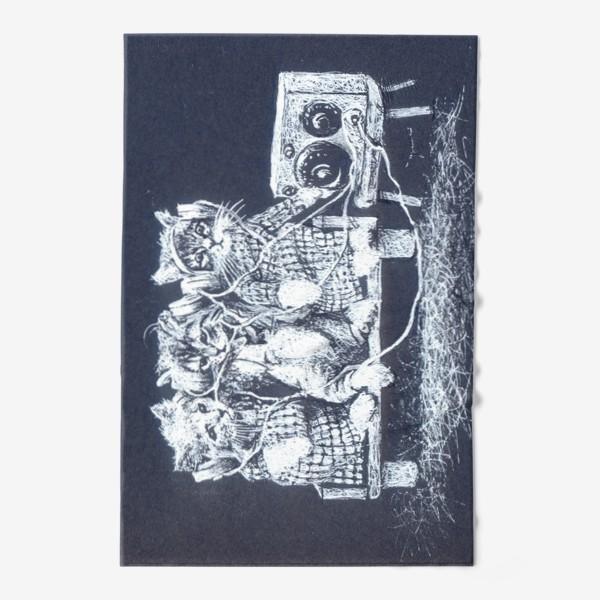 Полотенце «Три кота, музыка»