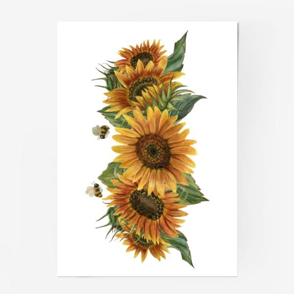 Постер «Подсолнухи и пчелы»