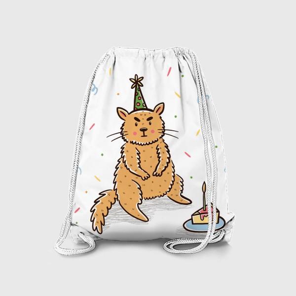 Рюкзак «Недовольный милый котик. Праздник. День рождения»