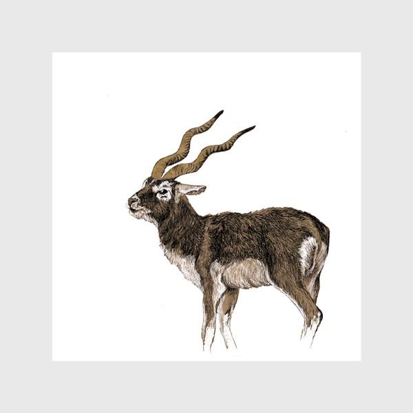 Шторы «Индийская антилопа гарна на белом фоне»