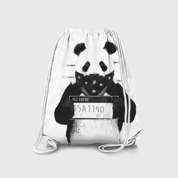 Рюкзак «Bad Panda автор Balazs Solti»