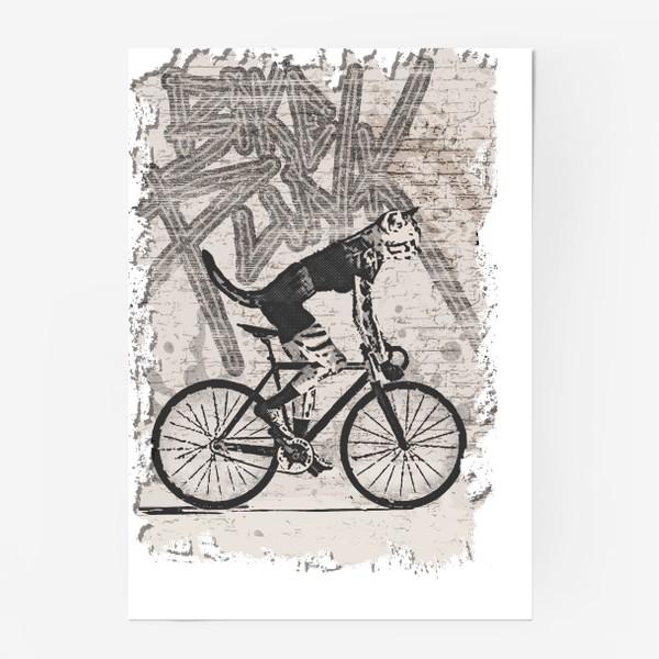 Постер «Cat Punk Rider»