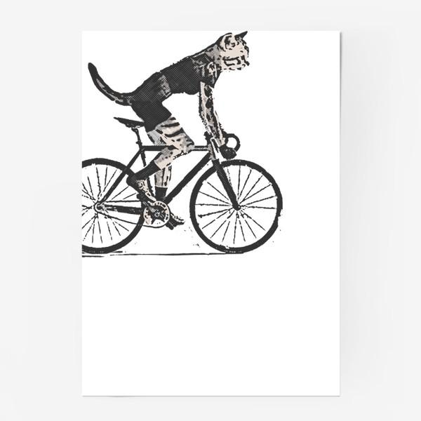 Постер «Cat Bike Punk Rider»