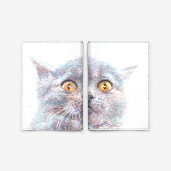Обложка для паспорта «Серый котик»