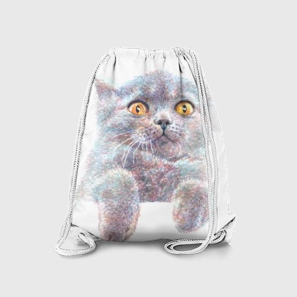 Рюкзак «Серый котик»