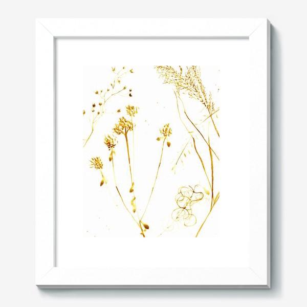 Картина «Сухоцветы»