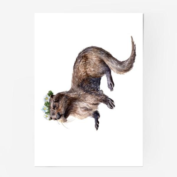 Постер «Речная выдра в венке из цветов лютиков»