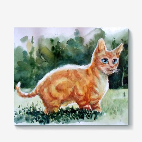 Холст «Рыжий котя на полянке»
