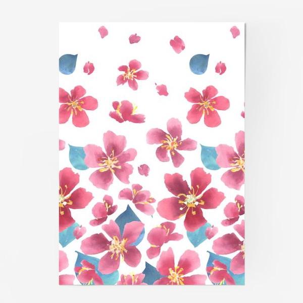 Постер «Цветение сакуры 1»