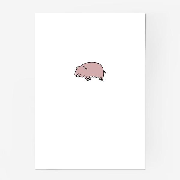 Постер «Свинка лежит на боку»