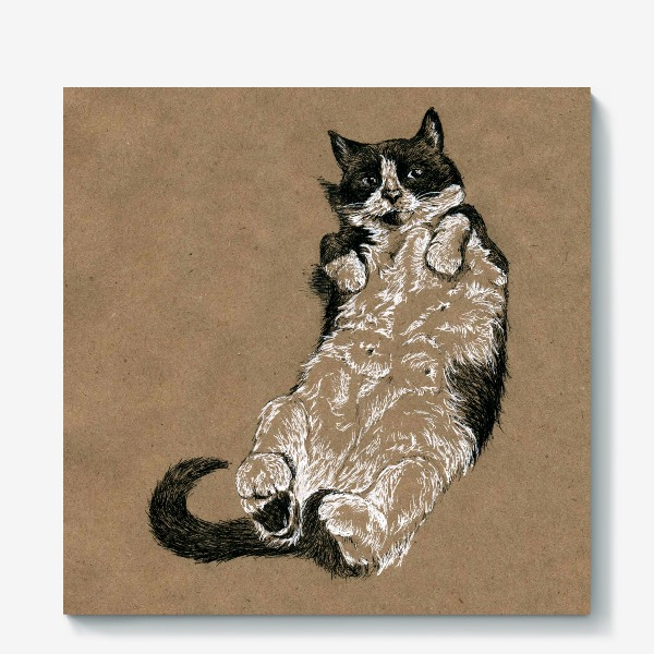 Холст «Чернобелый кот лежит на спине»
