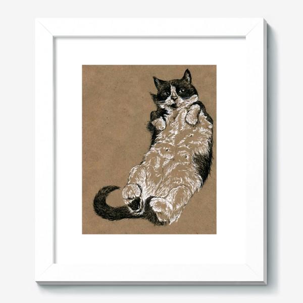 Картина «Чернобелый кот лежит на спине»