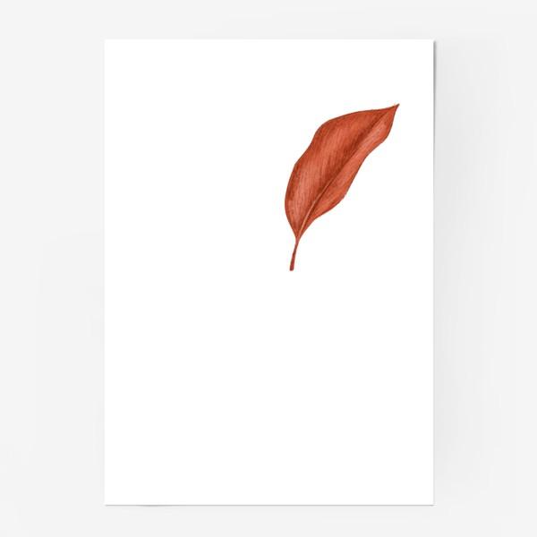 Постер «Тропики лист»