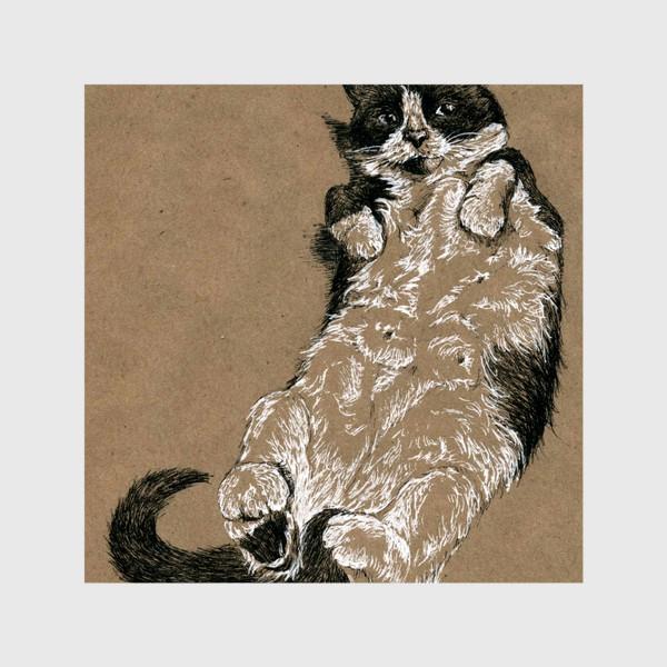 Шторы «Чернобелый кот лежит на спине»