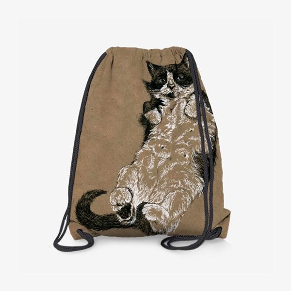Рюкзак «Чернобелый кот лежит на спине»