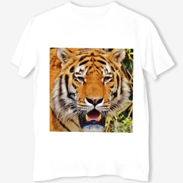 Футболка «Тигр»