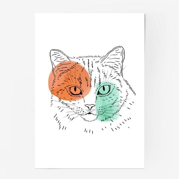 Постер «Акварельная кошка. Оранжевый и бирюзовый»