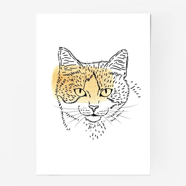 Постер «Акварельная кошка. Бежевая акварель»