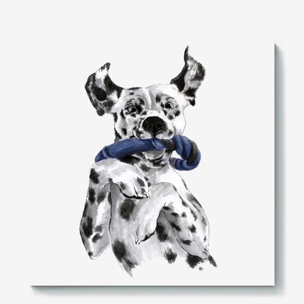 Холст «Портрет собаки породы далматинец с игрушкой»