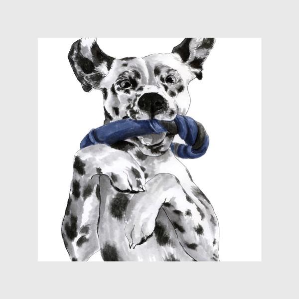Шторы «Портрет собаки породы далматинец с игрушкой»