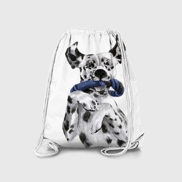 Рюкзак «Портрет собаки породы далматинец с игрушкой»