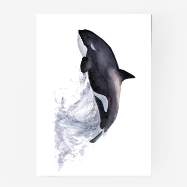 Постер «Рыба Косатка выпрыгивает из воды»