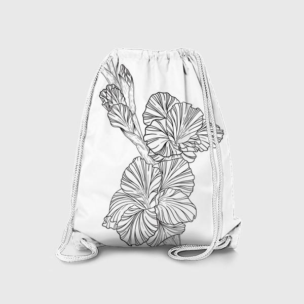 Рюкзак «Гладиолусы. Графика.»