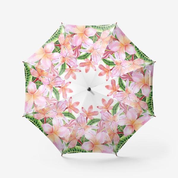 Зонт «Плюмерии»