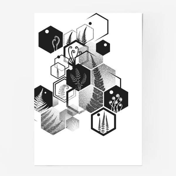 Постер «Hexagon Ferns»