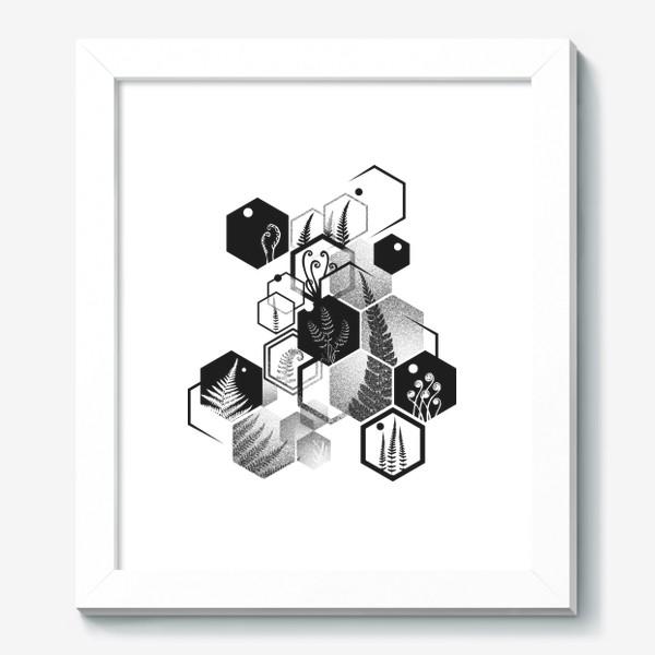 Картина «Hexagon Ferns»
