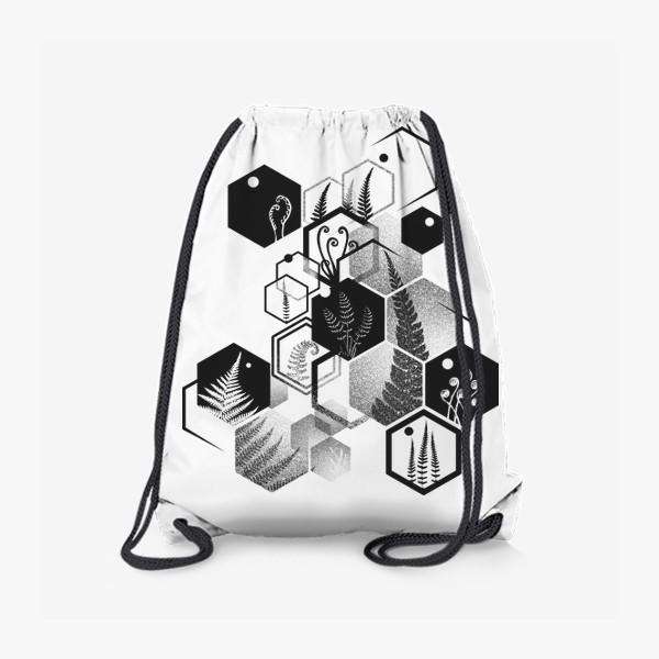 Рюкзак «Hexagon Ferns»