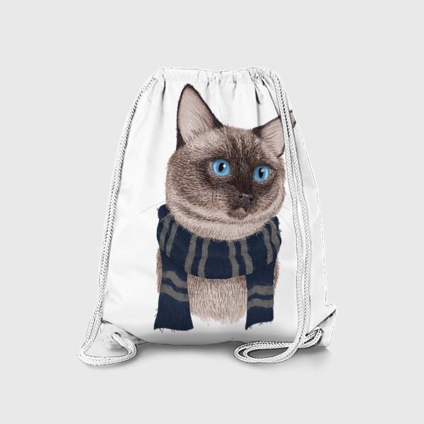Рюкзак «Котики Хогвартса. Когтевран.»