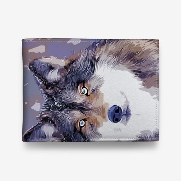 Кошелек «Яркий принт с волком»