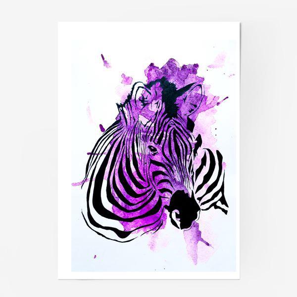 Постер «Зебра»