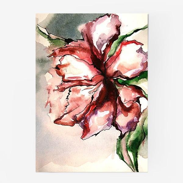 Постер «Красный цветок»