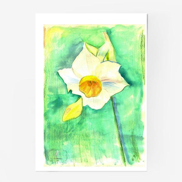 Постер «Нарцисс»