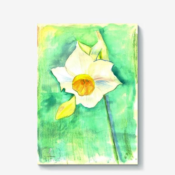 Холст «Нарцисс»