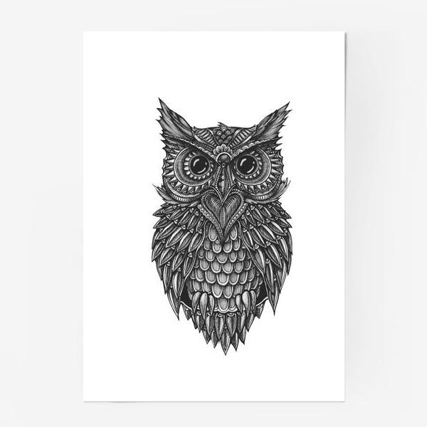 Постер «Чёрно белая сова»