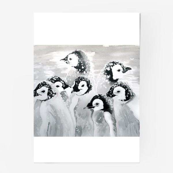 Постер «Пингвины»