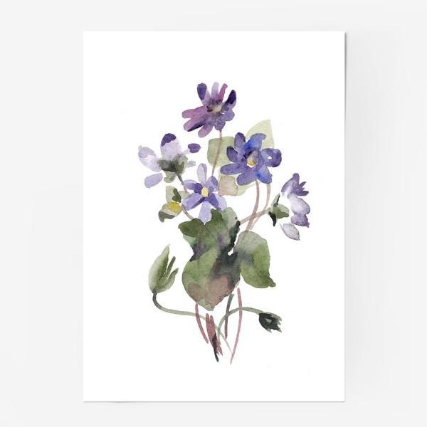 Постер «Фиалки акварельные»