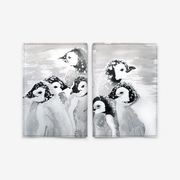 Обложка для паспорта «Пингвины»