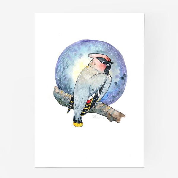 Постер «Птица Свиристель»