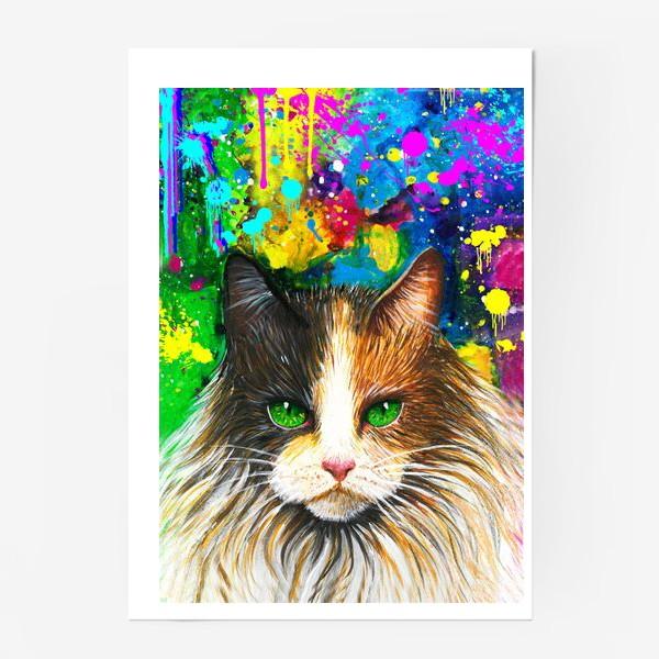Постер «красочный кот »