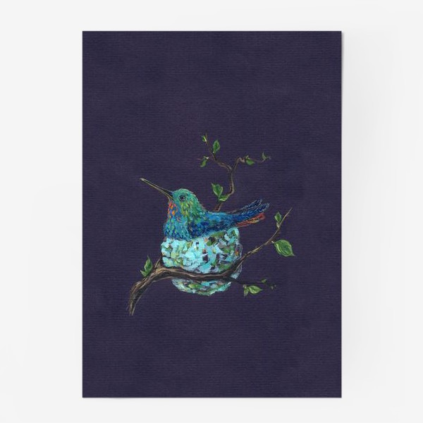 Постер «колибри в гнездышке»