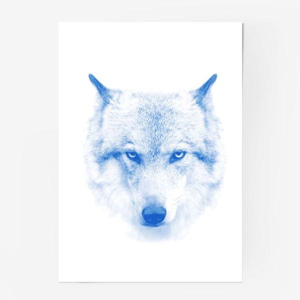 Постер «Wilderness»