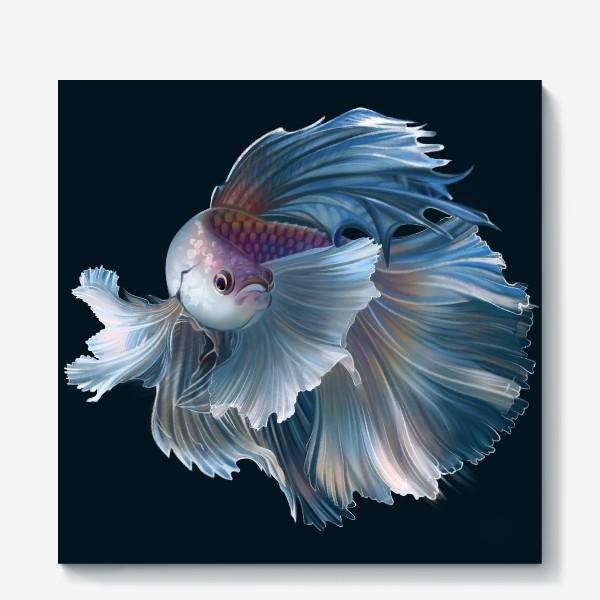 Холст «Голубая рыбка. Вуалехвост»