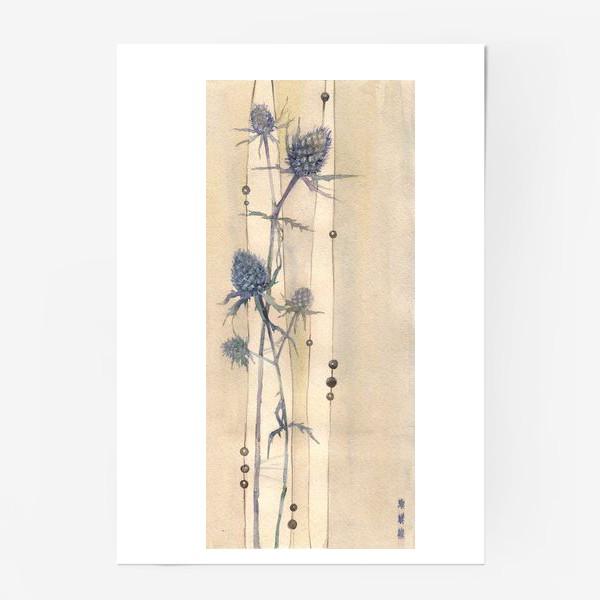 Постер «Сухоцветы: Колючки синеголовника »