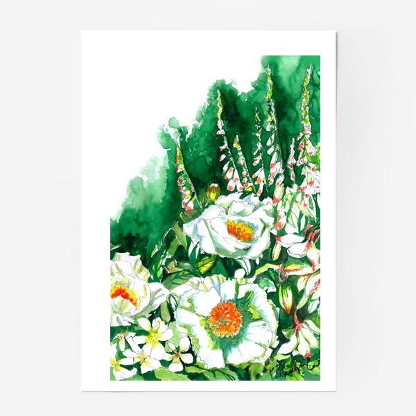 Постер «Цветы шиповника и водосбор»