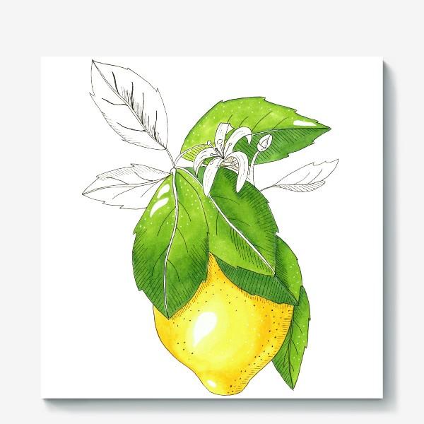 Холст «Сочный лимон»