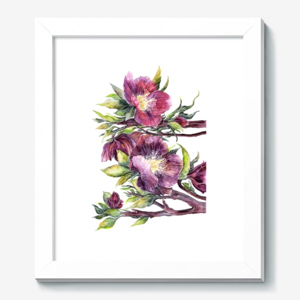 Картина «Цветы Морозник»
